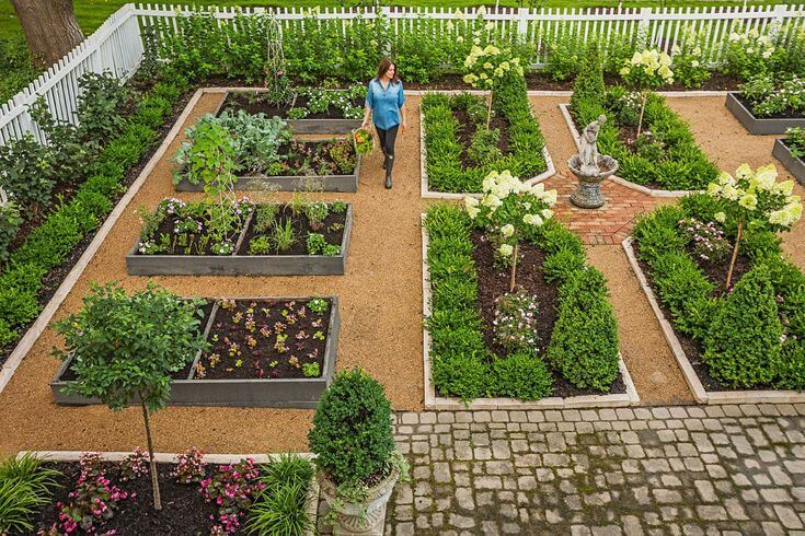Organisation d'un jardin biologique