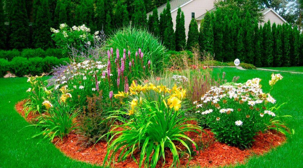 Massif plantes vivaces, conseils pour avoir un beau jardin